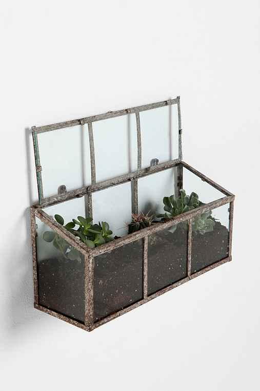 Thumbnail image for Glass Terrarium