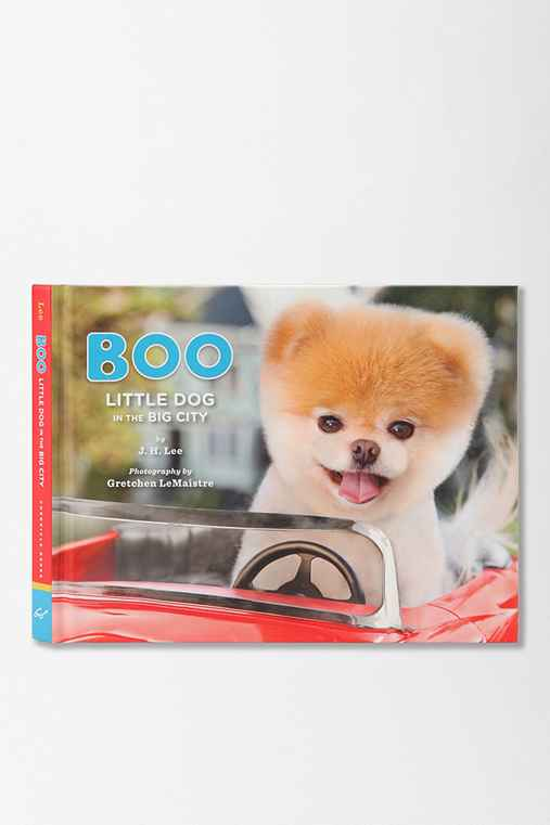 Boo: Little Dog In The Big City By J.H. Lee