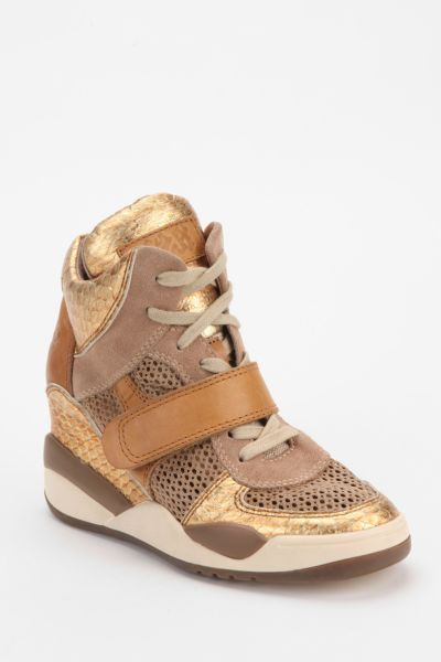 Ash Funky Open Mesh Hidden Wedge High-Top Sneaker