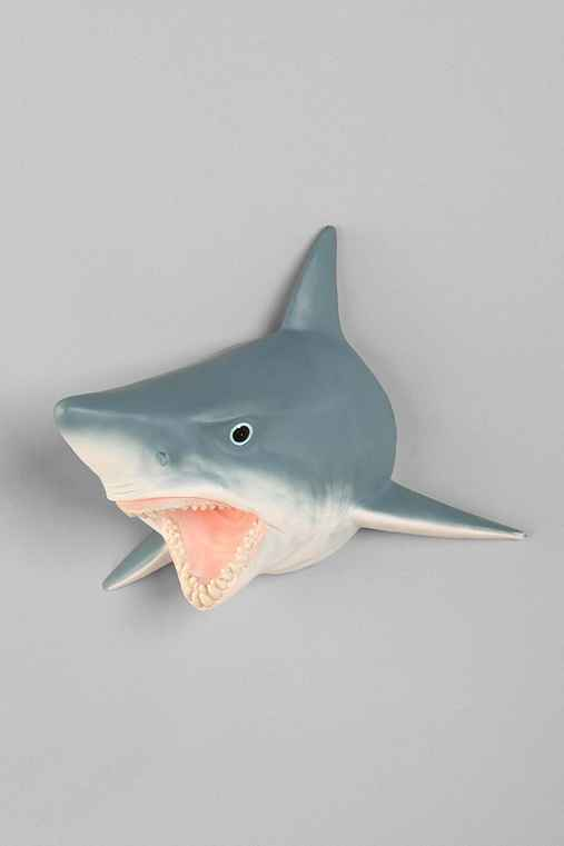 Shark Head Wall Sculpture
