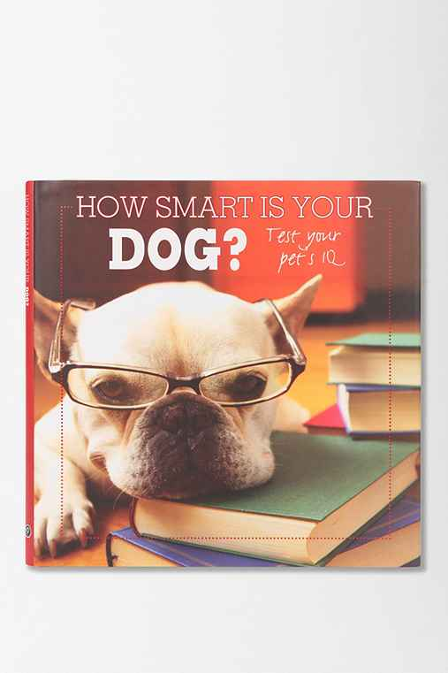 How Smart Is Your Dog? By Parragon