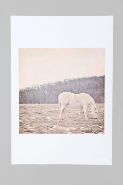 Laura Ruth For Society6 Pretty White Pony Art Print