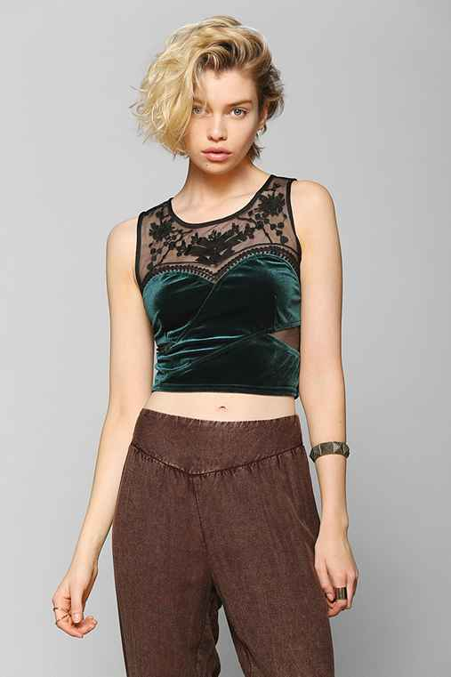Staring At Stars Embroidered Velvet Cropped Top