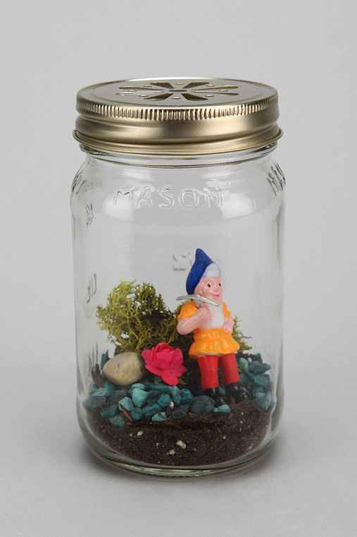 Spitfire Girl Terrarium Kit