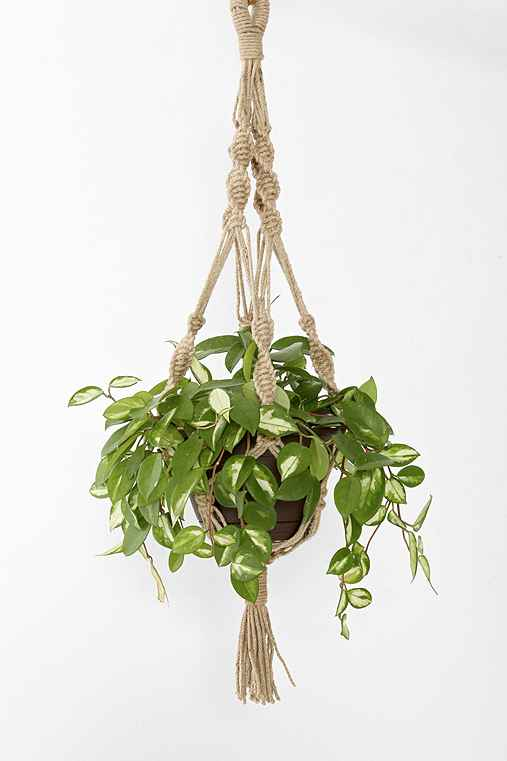 Magical Thinking Hand-Knotted Hanging Planter,MULTI,ONE SIZE