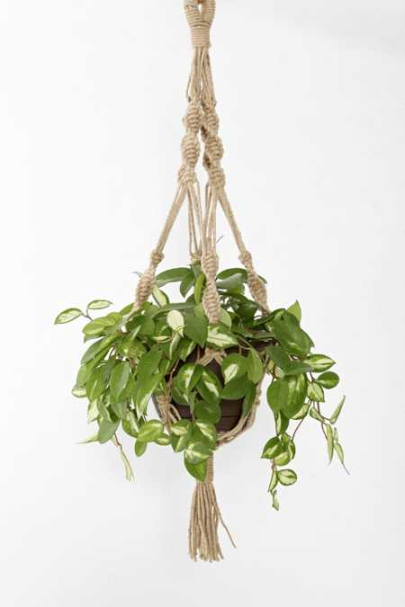 Magical Thinking Hand-Knotted Hanging Planter