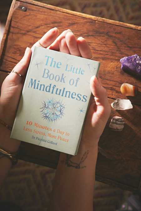The Little Book Of Mindfulness By Patrizia Collard