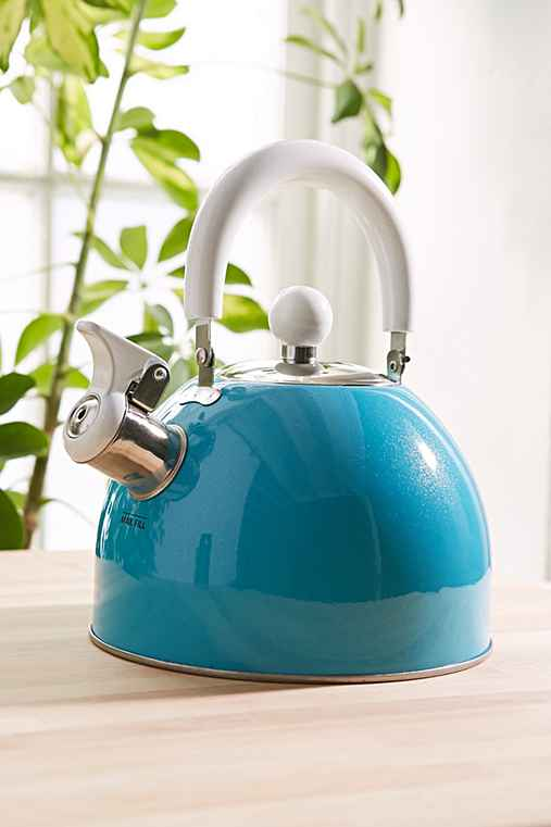 Stainless Tea Kettle,BLUE,ONE SIZE