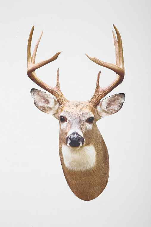 White Tail Deer Mount Wall Decal
