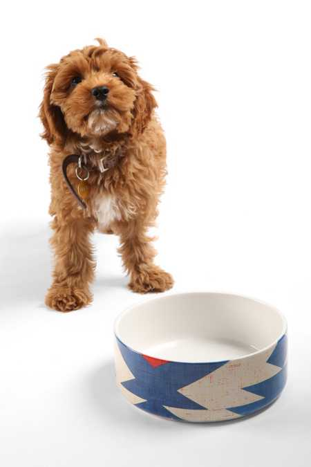 Holli Zollinger For DENY Diamond Kilim Pet Bowl Set