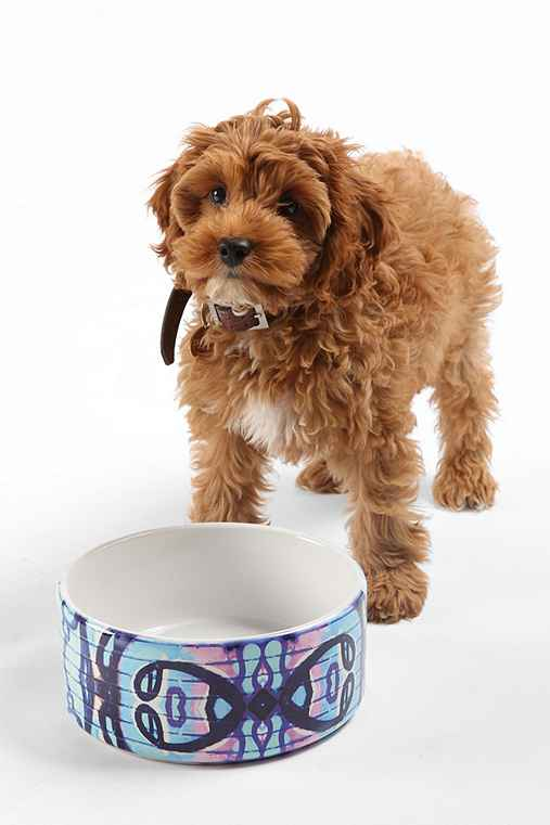 Caleb Troy For DENY Carried Away Pet Bowl Set,BLUE,ONE SIZE
