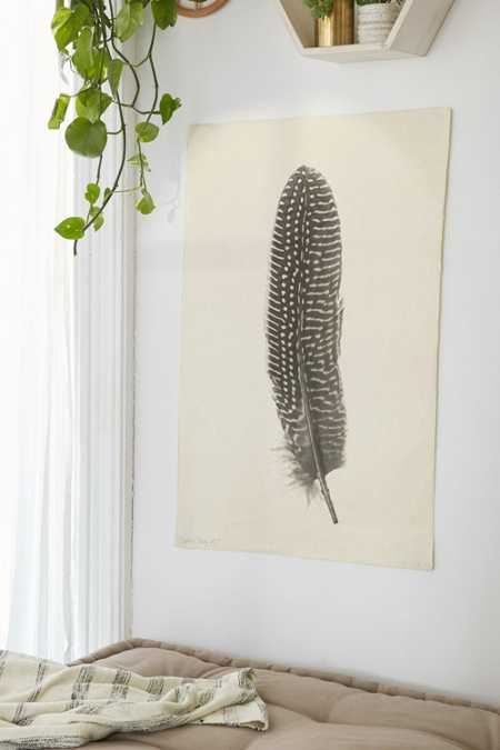 Feather Study No. 5 Art Print