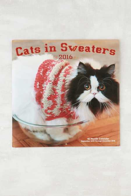 Cats In Sweaters 2016 Wall Calendar