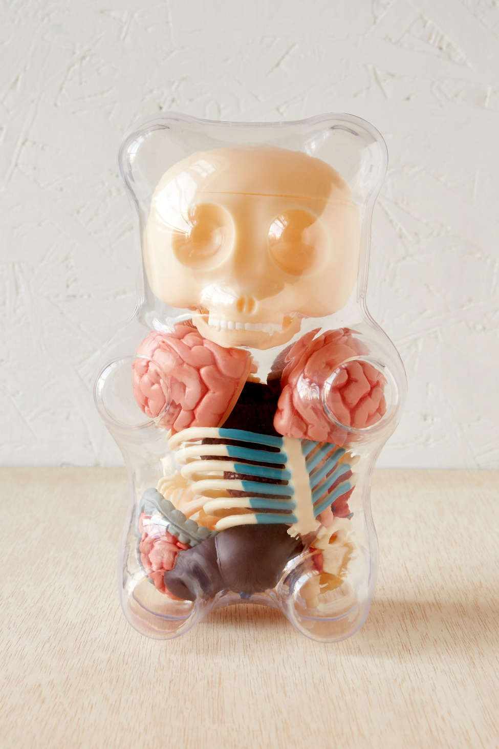Anatomical Gummi Bear Puzzle Kit