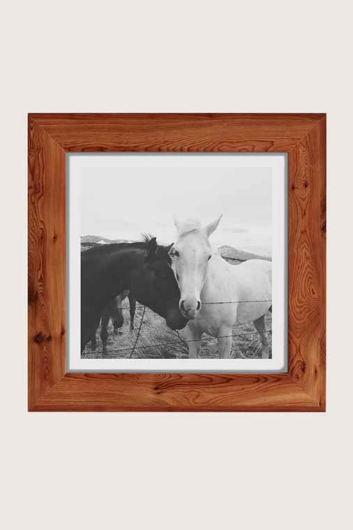 Kevin Russ Horse Cuddle Art Print,CEDAR,44X44