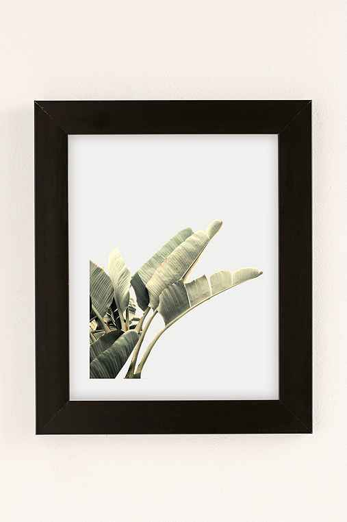 Wilder California Beverly Hills Banana Tree Art Print,BLACK MATTE FRAME,13X19