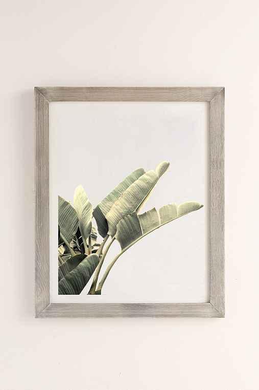Wilder California Beverly Hills Banana Tree Art Print,GREY BARNWOOD,40X60