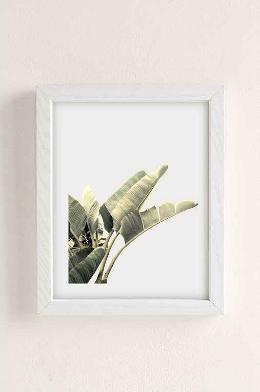 Wilder California Beverly Hills Banana Tree Art Print,WHITE WOOD FRAME,13X19