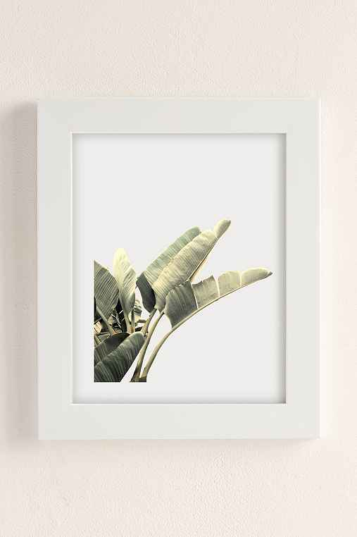 Wilder California Beverly Hills Banana Tree Art Print,WHITE MATTE FRAME,8X10