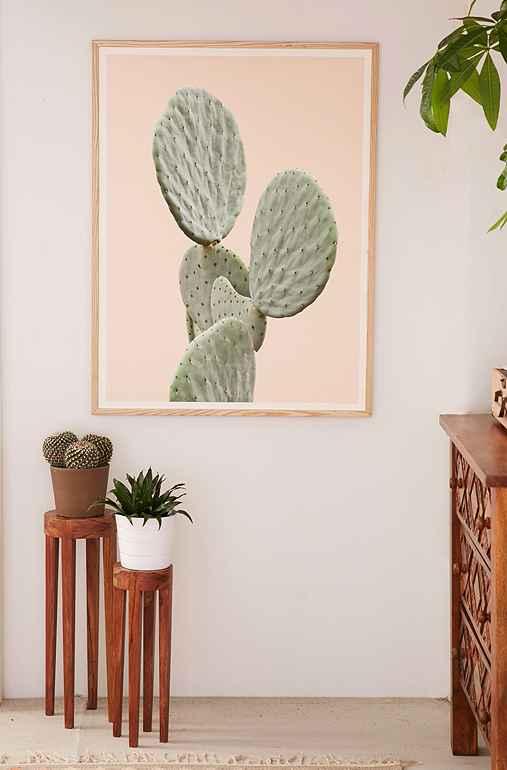 Wilder California Mountain Cactus Art Print,NATURAL WOOD FRAME,13X19