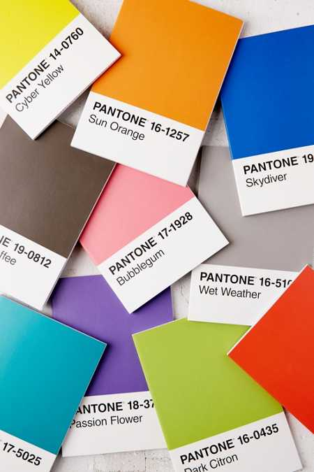 Pantone Notebooks Set