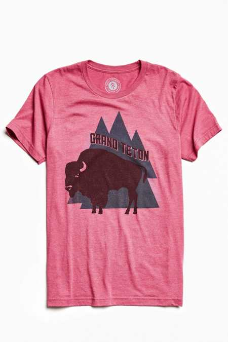 Parks Project Grand Teton Buffalo Tee