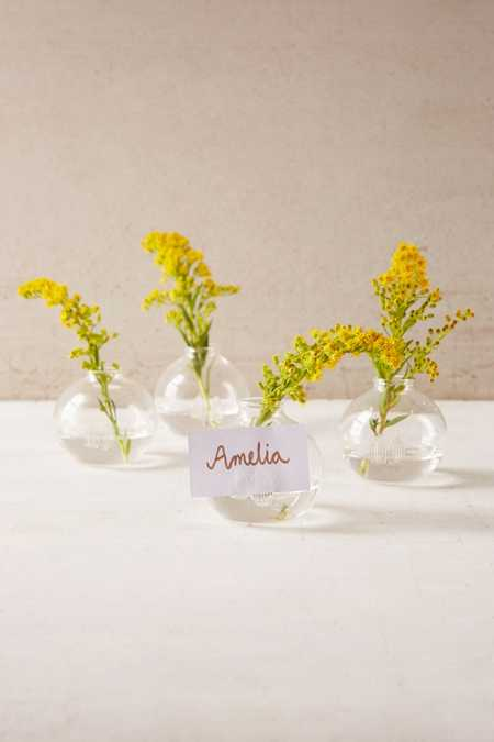Grow Place Setting Vase Set