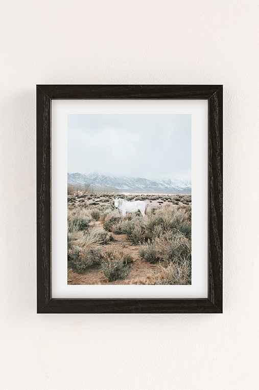 Rodrigo Trevino Desert Horse Art Print,BLACK WOOD FRAME,18X24