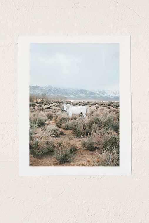 Rodrigo Trevino Desert Horse Art Print,NO FRAME,30X40
