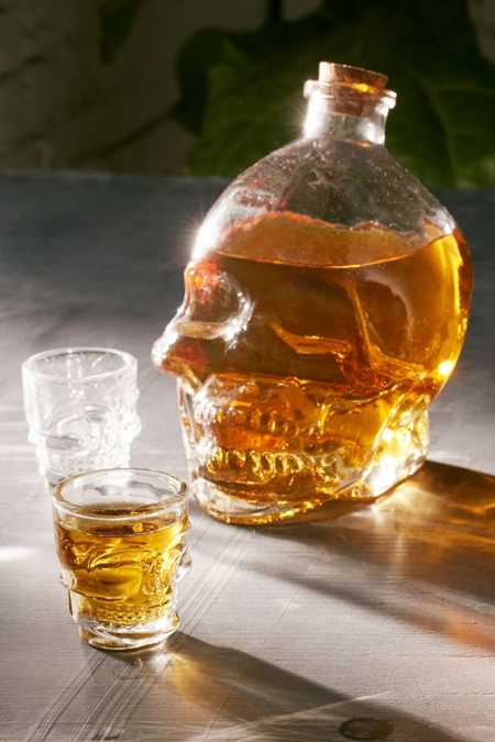 Skull Decanter + Shot Glasses Set