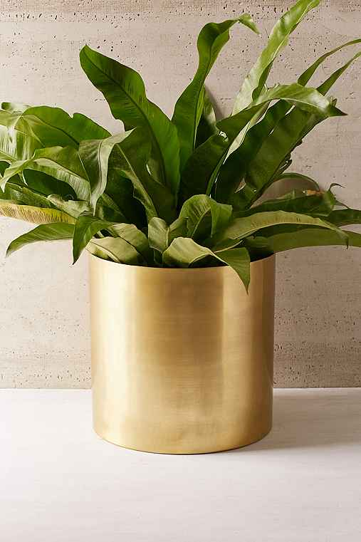 Mod Metal Planter,BRASS,ONE SIZE
