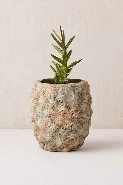 Pineapple Planter,OLIVE,ONE SIZE