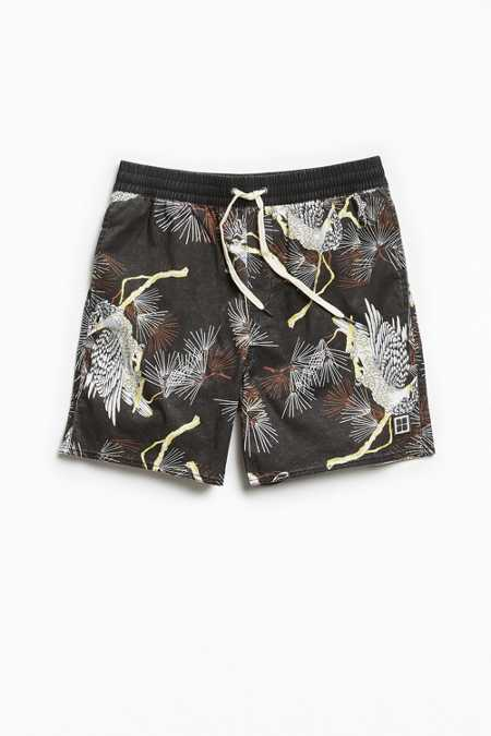 Insight Dragon Print Boardshort