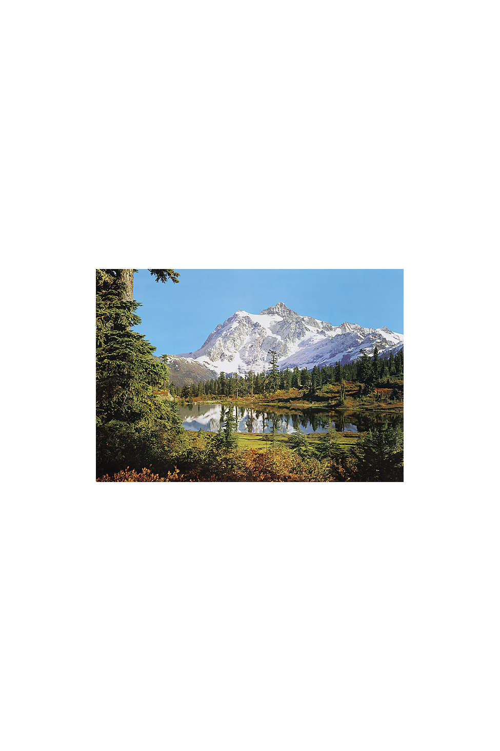 Mountain Wall Mural rocky mountains wall mural | urban outfitters