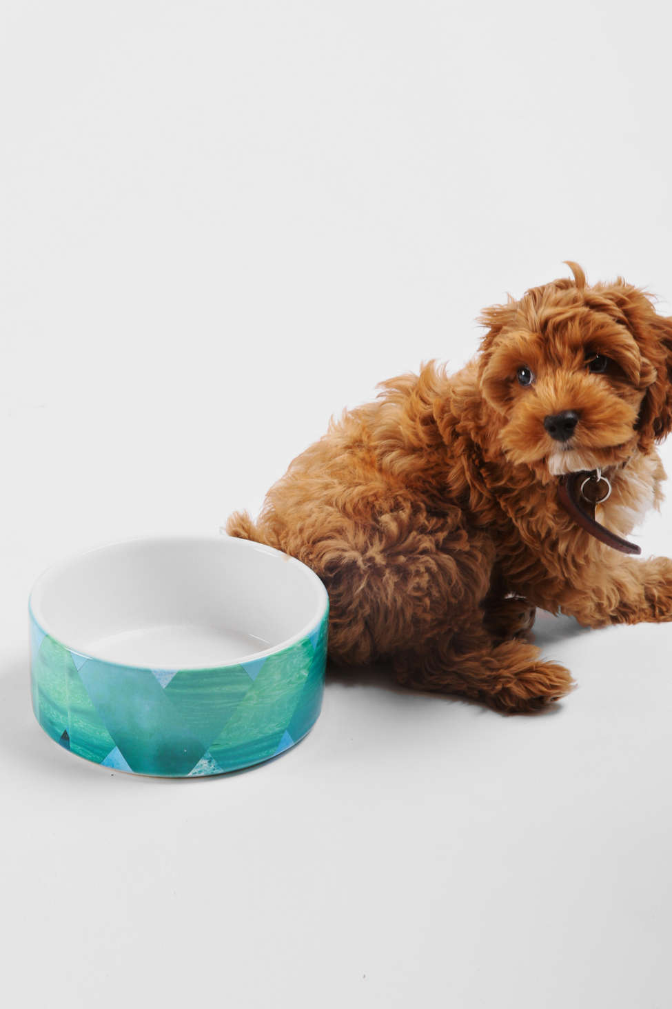 Slide View: 1: Kei Ivor For Deny Pet Bowl Set