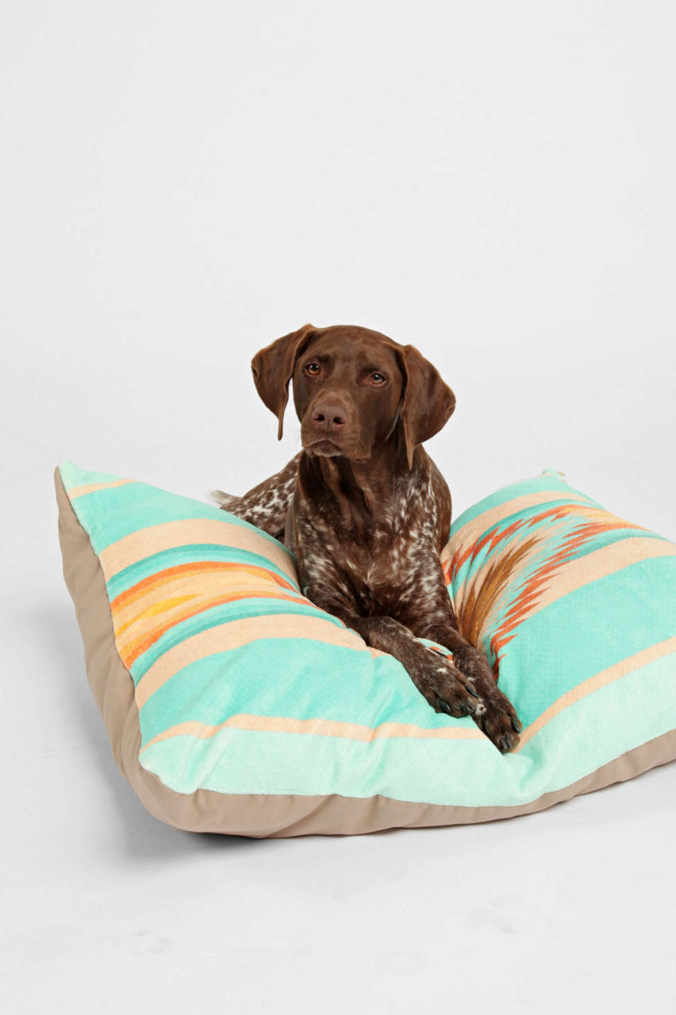 Slide View: 1: Bianca Green For Deny Fiesta Teal Pet Bed