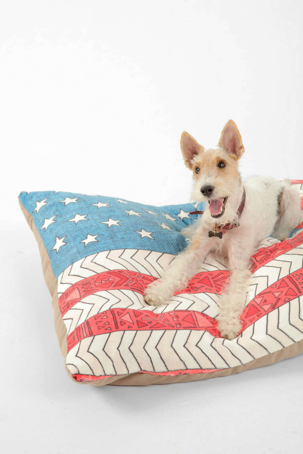 Slide View: 1: Bianca Green For Deny USA Pet Bed