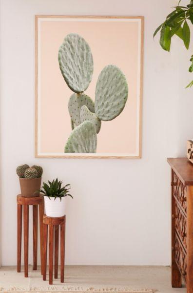 Wilder California Mountain Cactus Art Print