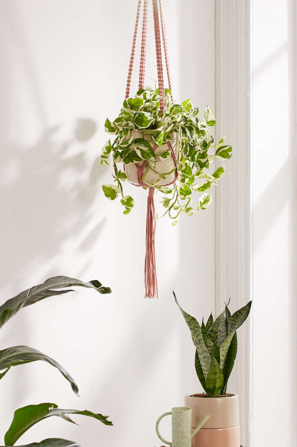Slide View: 1: Serena Ombre Macrame Hanging Planter