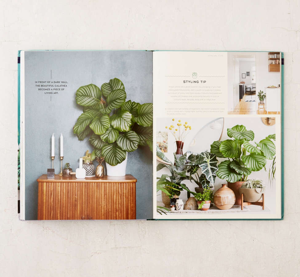 Slide View: 5: Urban Jungle: Living And Styling With Plants By Igor Josifovic & Judith de Graaff
