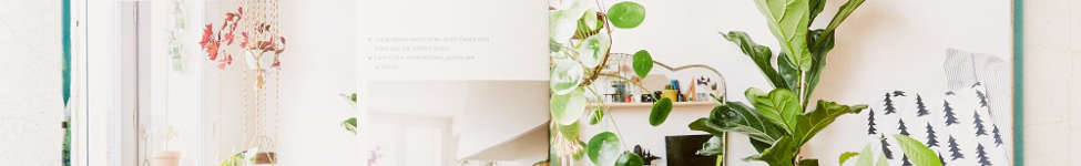 Thumbnail View 6: Urban Jungle: Living And Styling With Plants By Igor Josifovic & Judith de Graaff