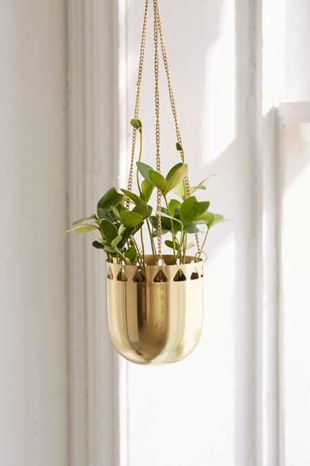 Gold - Terrariums + Indoor Planters | Urban Outfitters