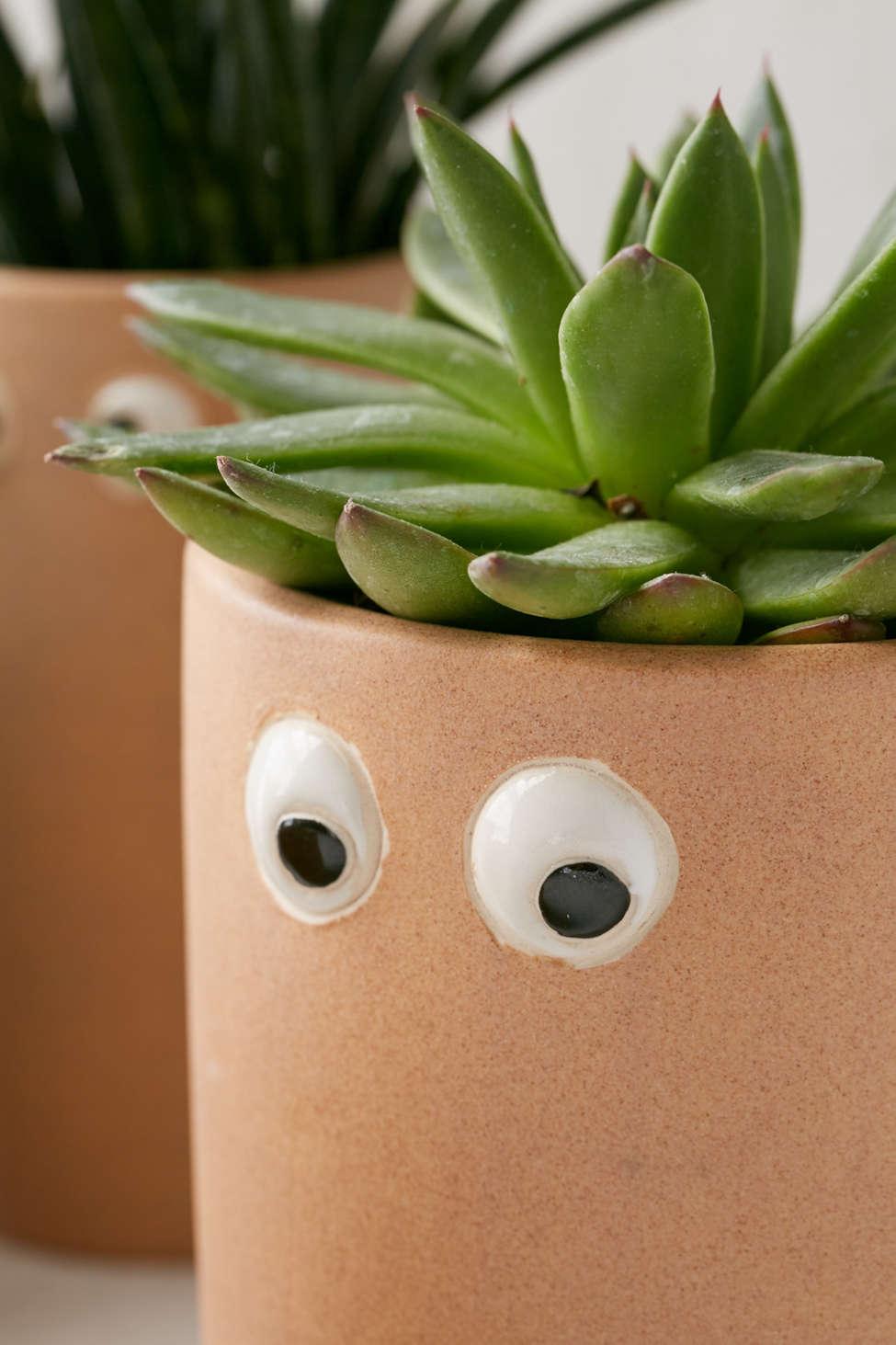 Slide View: 3: Henry Googly Eye Planter