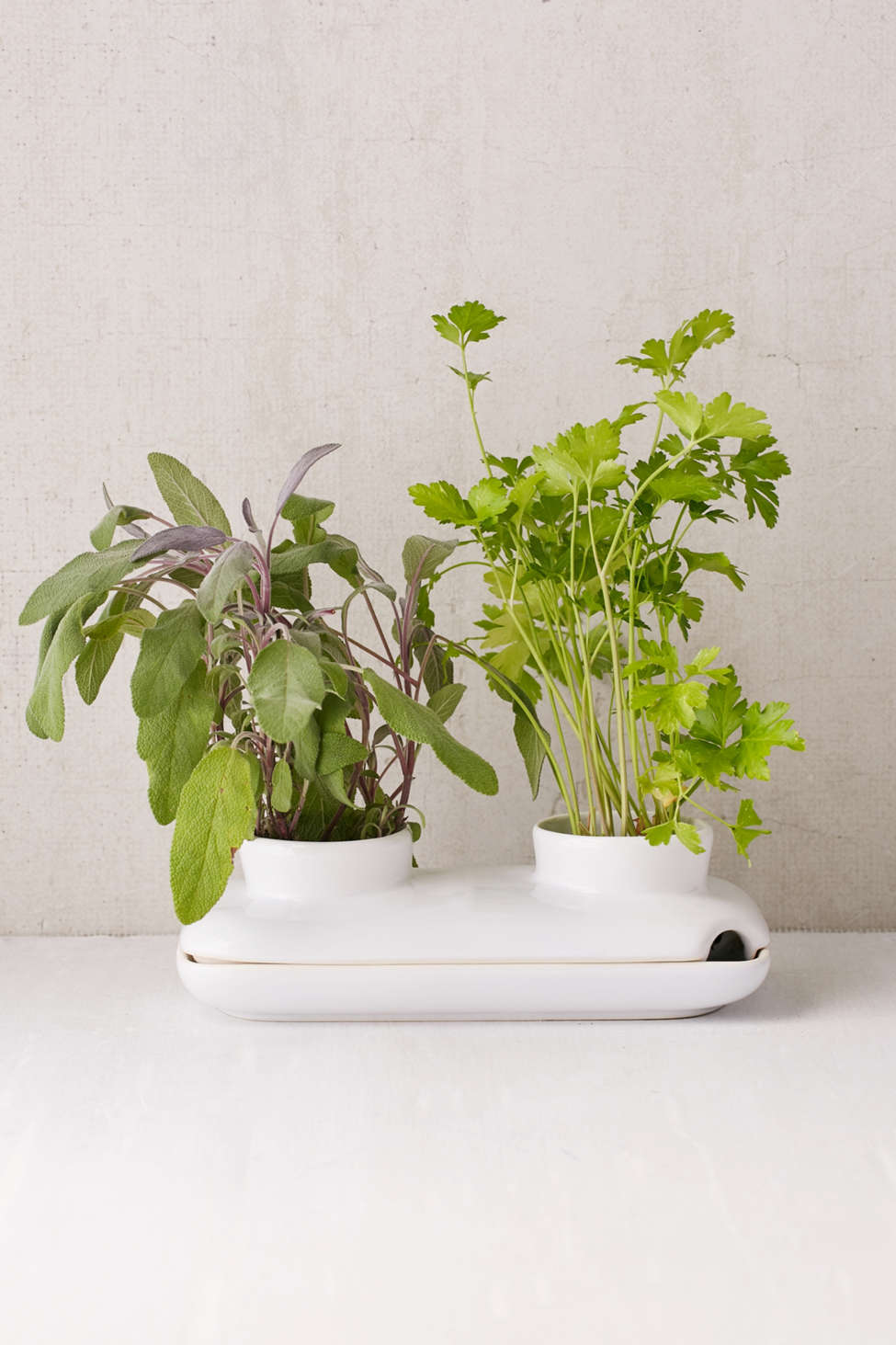 Slide View: 1: Duo Herb Planter