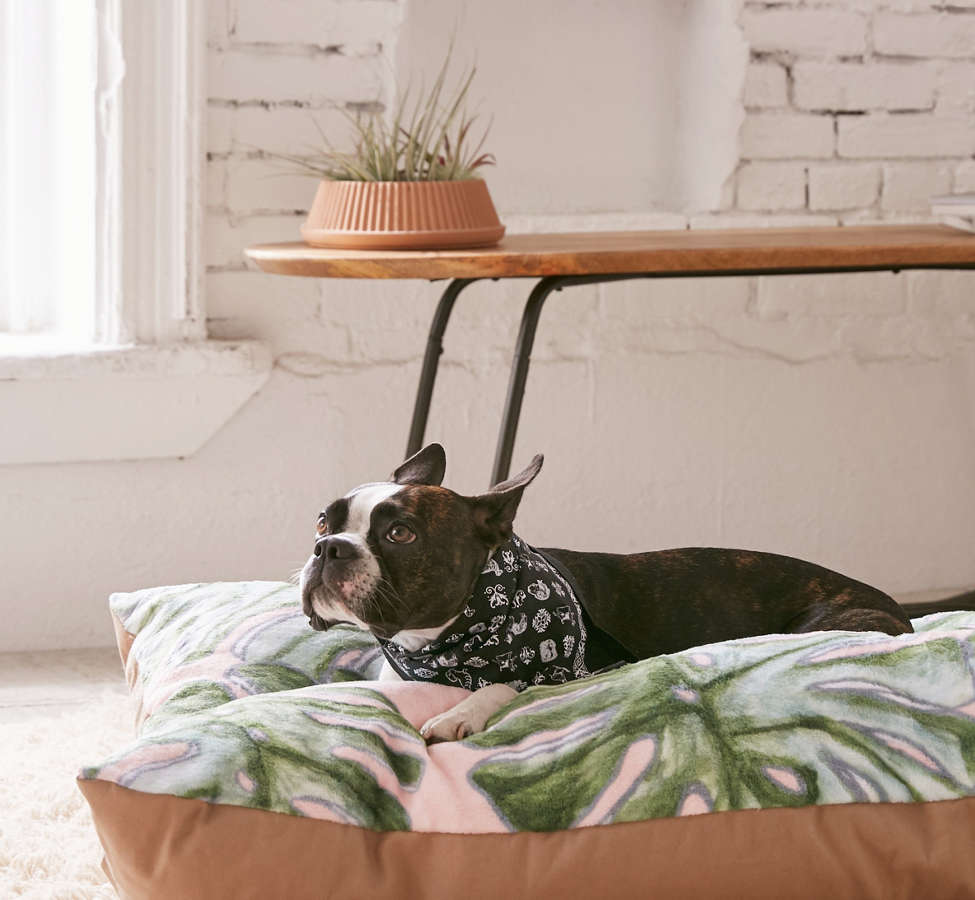 Slide View: 1: Madart Inc. For Deny Tropical Fusion Pet Bed