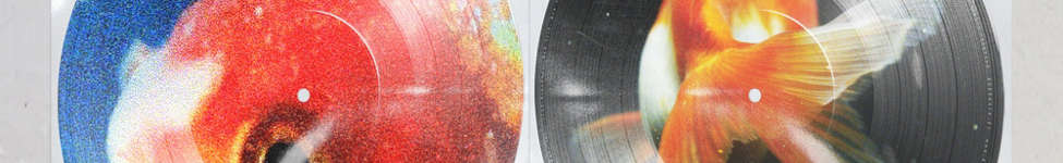 Thumbnail View 1: Vince Stapes - Big Fish Theory Limited Picture Disc 2XLP