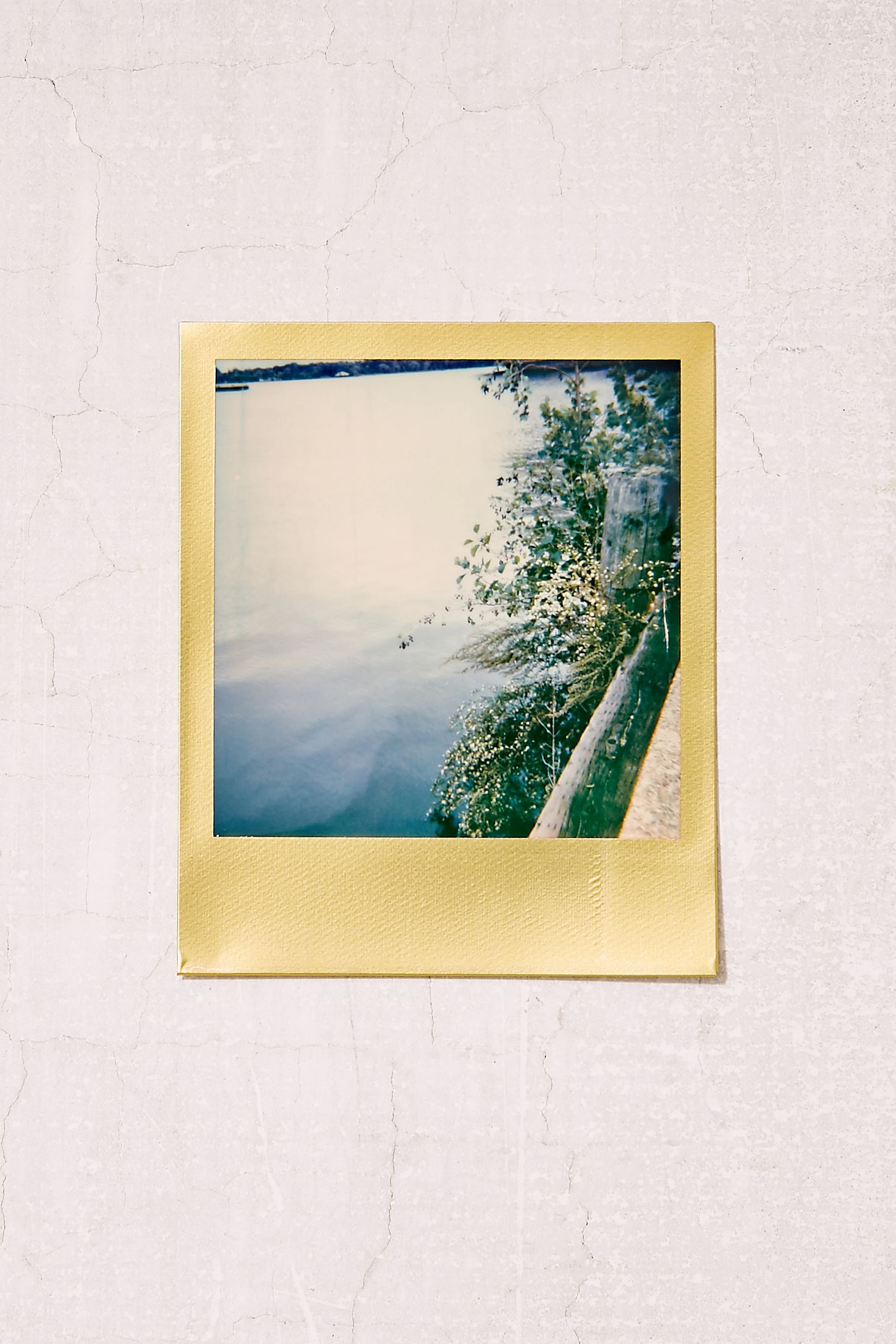 Polaroid Originals Limited Edition Gold Frame 600 Instant Film ...
