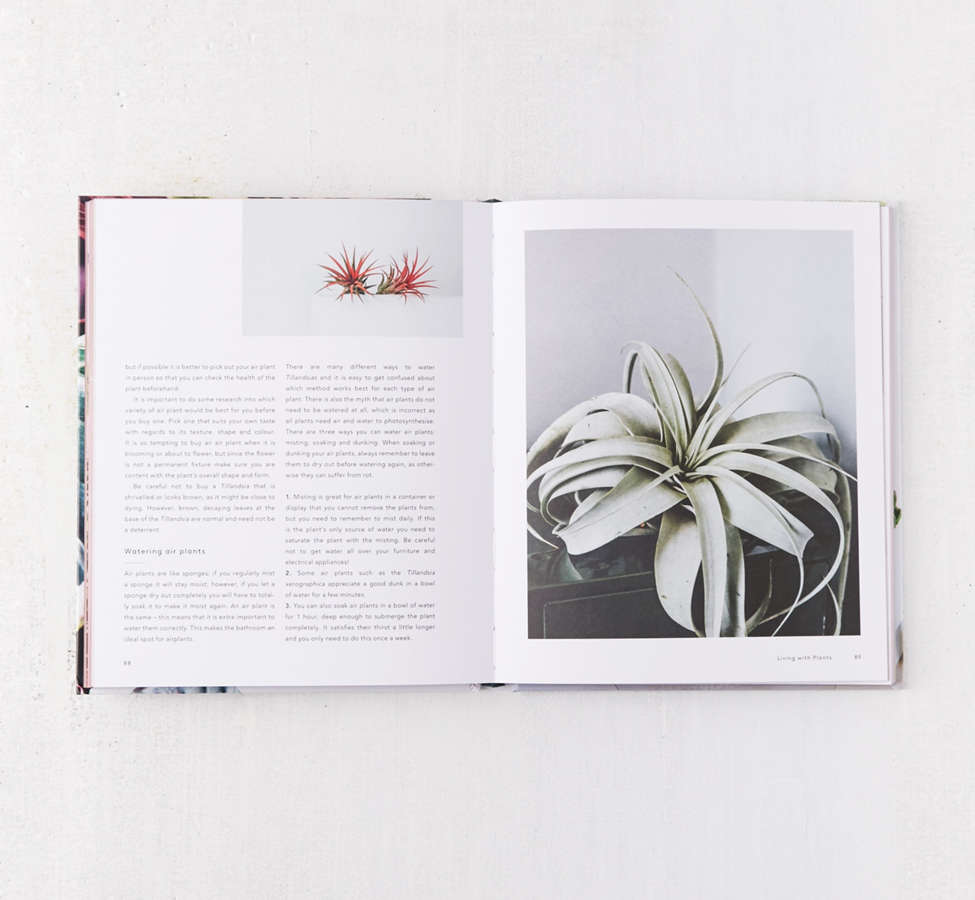 Slide View: 4: Living with Plants: A Guide to Indoor Gardening By Sophie Lee