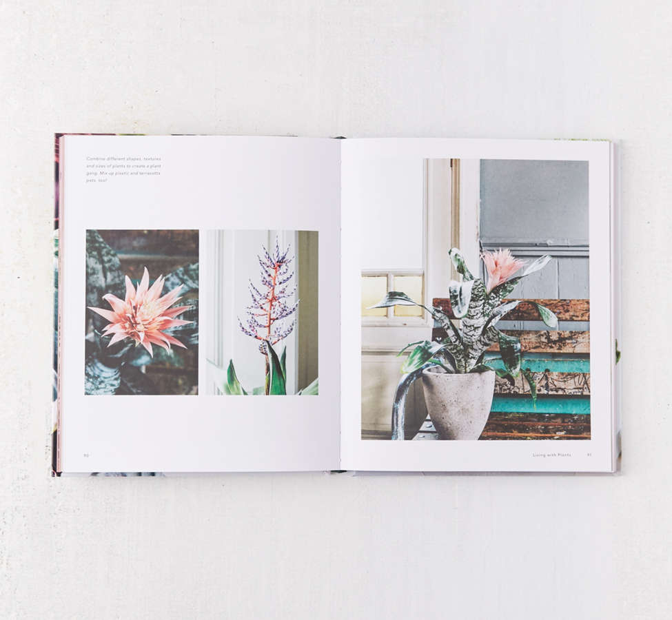 Slide View: 6: Living with Plants: A Guide to Indoor Gardening By Sophie Lee