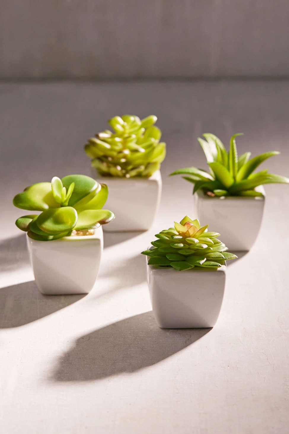Slide View: 1: Potted Faux Echeveria Succulent Plant